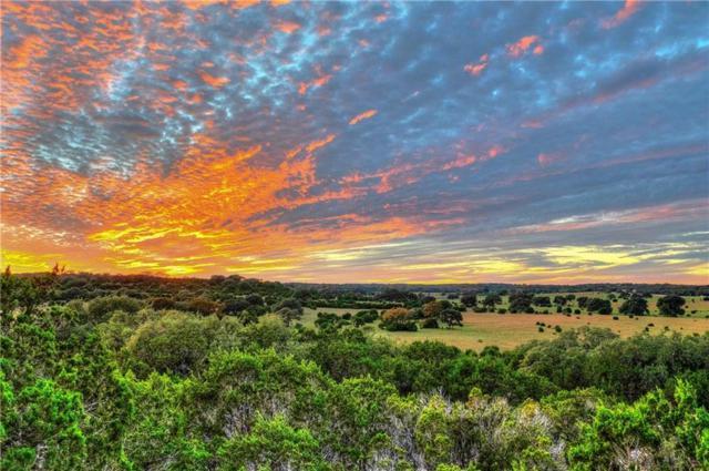 807 Elder Hill Rd, Driftwood, TX 78619 (#6230384) :: Zina & Co. Real Estate