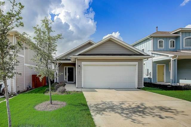 183 Guemal Rd, Buda, TX 78610 (#6235283) :: Azuri Group   All City Real Estate