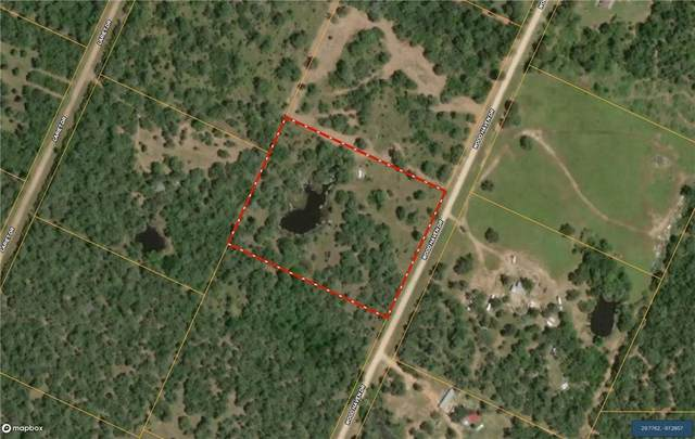 1721 Wood Haven Dr, Waelder, TX 78959 (#6244892) :: Papasan Real Estate Team @ Keller Williams Realty