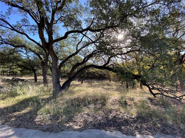 1403 Emerald Rd, Lago Vista, TX 78645 (MLS #6257722) :: Vista Real Estate