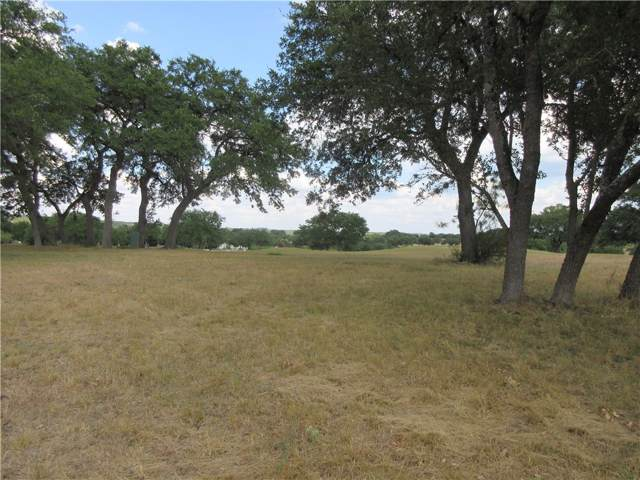 2901 Cliff Overlook, Spicewood, TX 78669 (#6259899) :: Watters International