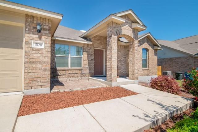 1828 Strawcove, New Braunfels, TX 78130 (#6265063) :: The Heyl Group at Keller Williams