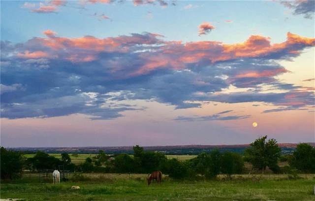 2867 Farm To Market 1376, Fredericksburg, TX 78624 (MLS #6303035) :: Brautigan Realty