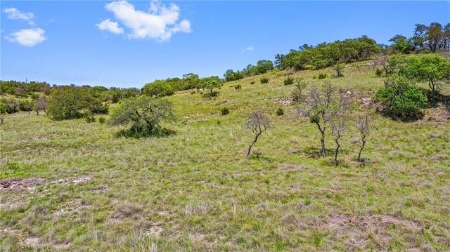 00 Fallen Acorn, Blanco, TX 78606 (#6305854) :: Zina & Co. Real Estate