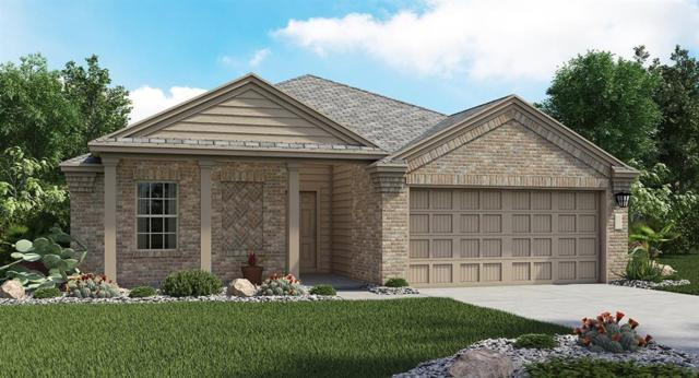 711 Carol Dr, Hutto, TX 78634 (#6306199) :: The Gregory Group