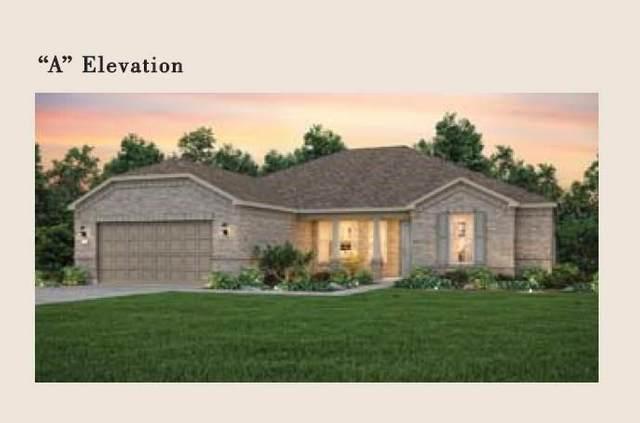 114 Palo Blanco Creek Ln, Georgetown, TX 78633 (MLS #6312667) :: Brautigan Realty