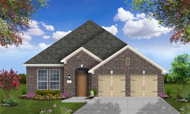 300 W Doucet Cv, Round Rock, TX 78665 (#6343998) :: Watters International