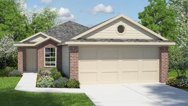 14107 Macquarie Dr, Pflugerville, TX 78660 (#6344193) :: Ben Kinney Real Estate Team