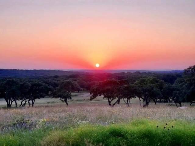 Lots 187 Blackbuck Ridge Dr, Lampasas, TX 76550 (#6354158) :: The Perry Henderson Group at Berkshire Hathaway Texas Realty