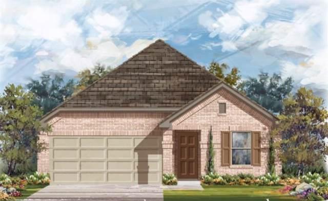 14106 Honey Gem Dr, Austin, TX 78660 (#6360772) :: Ben Kinney Real Estate Team