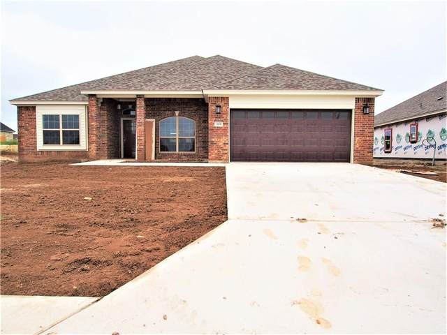 209 Terry Meadow Ln, Jarrell, TX 76537 (#6365015) :: The Perry Henderson Group at Berkshire Hathaway Texas Realty