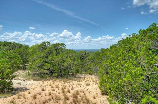 6704 Shaw Dr, Marble Falls, TX 78654 (#6365121) :: Front Real Estate Co.