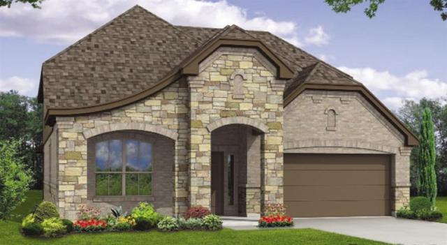 1313 Goldilocks Ln, Austin, TX 78652 (#6371520) :: Watters International