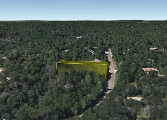 390 Akaloa Dr, Bastrop, TX 78602 (#6382014) :: Papasan Real Estate Team @ Keller Williams Realty