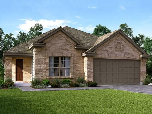 161 Evening Dusk Dr, Kyle, TX 78640 (#6397476) :: Ana Luxury Homes
