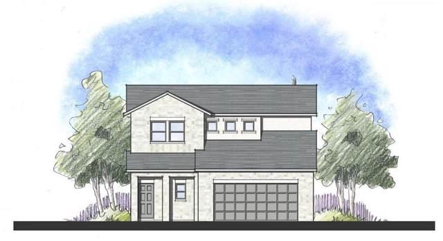 536 Lacey Oak Loop, San Marcos, TX 78666 (#6399609) :: Ana Luxury Homes