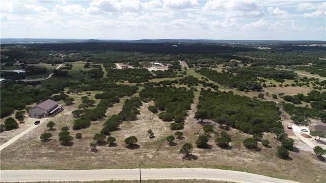 220 Rain Lily Ct, Burnet, TX 78611 (#6410022) :: The Perry Henderson Group at Berkshire Hathaway Texas Realty