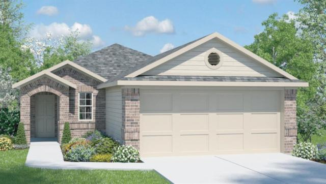 136 Presidential Path, Liberty Hill, TX 78642 (#6417653) :: Zina & Co. Real Estate