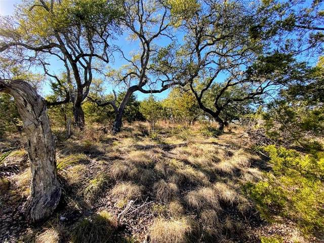LOT 14 Twin Creek Cir, Dripping Springs, TX 78620 (#6431239) :: 12 Points Group
