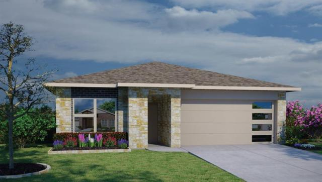 509 Galway Bay Ln, Georgetown, TX 78626 (#6433090) :: RE/MAX Capital City