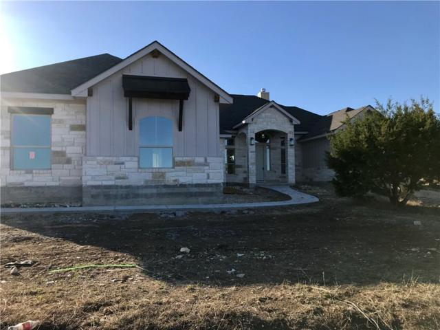 308 Joya Dr, Liberty Hill, TX 78642 (#6434209) :: Papasan Real Estate Team @ Keller Williams Realty