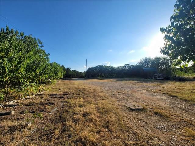 1200 Farview Cir, Leander, TX 78641 (#6446135) :: Papasan Real Estate Team @ Keller Williams Realty