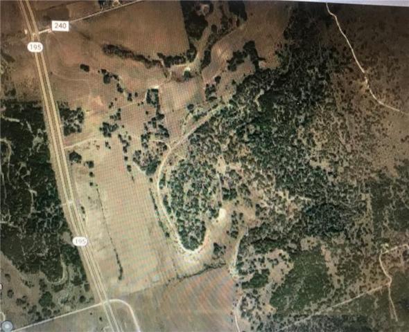 9666 Hwy 195 Hwy, Florence, TX 76527 (#6476723) :: Papasan Real Estate Team @ Keller Williams Realty