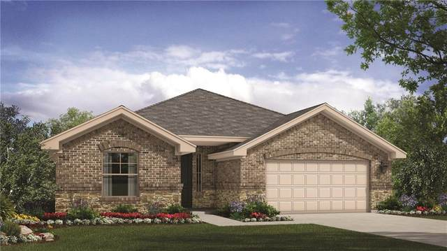 253 Helena Ln, Kyle, TX 78640 (#6493238) :: Realty Executives - Town & Country