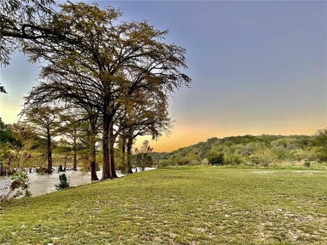121 Stageline Dr, Kyle, TX 78640 (#6506367) :: Papasan Real Estate Team @ Keller Williams Realty