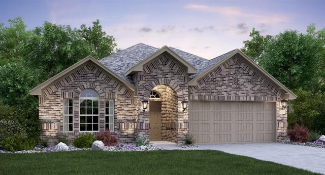 1259 Chad Dr, Round Rock, TX 78665 (#6506795) :: Papasan Real Estate Team @ Keller Williams Realty