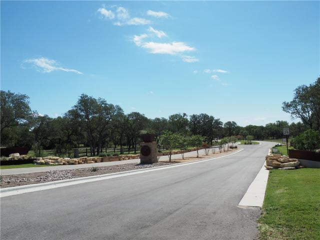 251 Dally Ct, Dripping Springs, TX 78620 (#6512709) :: The Perry Henderson Group at Berkshire Hathaway Texas Realty