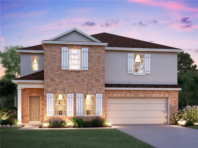 232 Falling Star, Georgetown, TX 78628 (#6515775) :: Ana Luxury Homes
