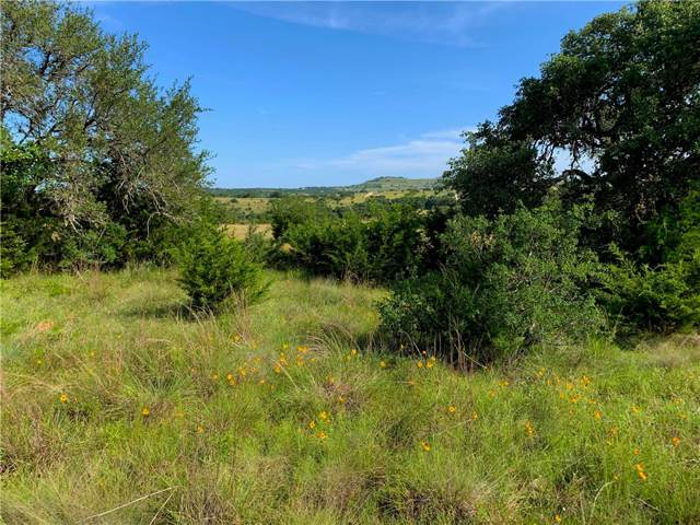 000 Odiorne Rd (Cr 208) Tr 4, Johnson City, TX 78636 (#6525945) :: Realty Executives - Town & Country
