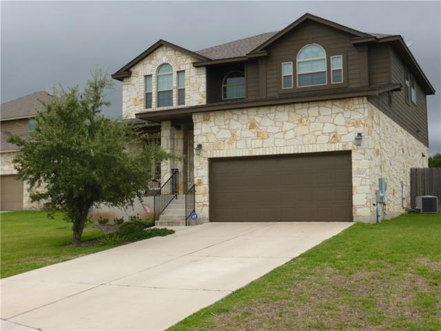 17610 Sly Fox Dr, Dripping Springs, TX 78620 (#6526231) :: RE/MAX Capital City
