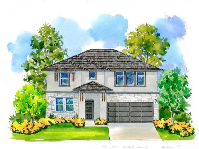1337 Eagle Ray Street, Leander, TX 78641 (#6541951) :: Amanda Ponce Real Estate Team