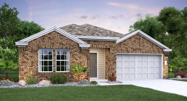 3205 Windy Vane Dr, Pflugerville, TX 78660 (#6552262) :: Ben Kinney Real Estate Team