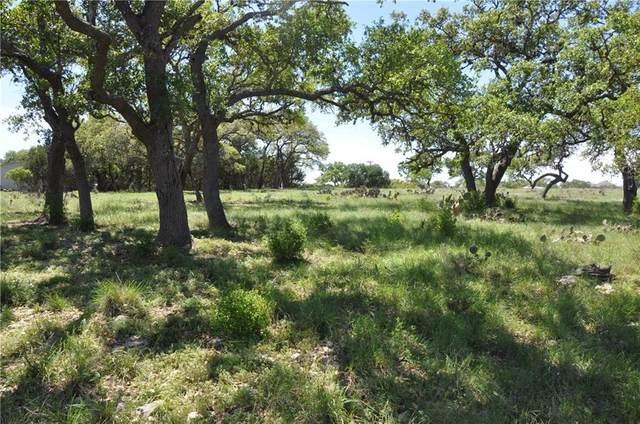 236 Broomweed Cir, Spring Branch, TX 78070 (#6565031) :: Watters International