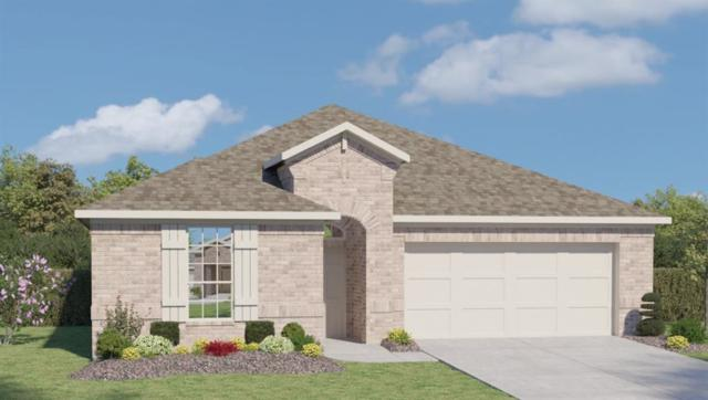 18405 Cercina Trl, Pflugerville, TX 78660 (#6571056) :: Watters International