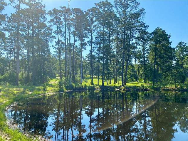 000 Split Oak Rd, Smithville, TX 78957 (#6595470) :: Papasan Real Estate Team @ Keller Williams Realty