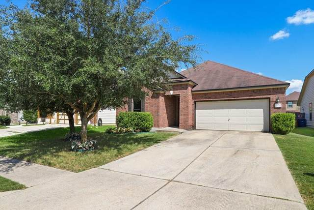 8721 Panadero Dr, Austin, TX 78747 (#6600939) :: Papasan Real Estate Team @ Keller Williams Realty