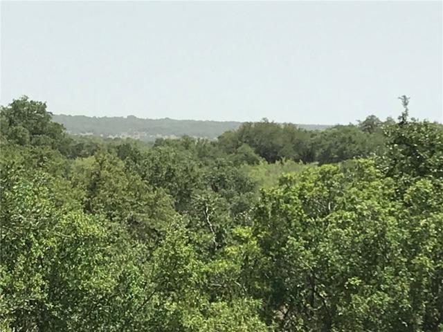 1000 Panther Creek Rd, Driftwood, TX 78619 (#6606539) :: The ZinaSells Group