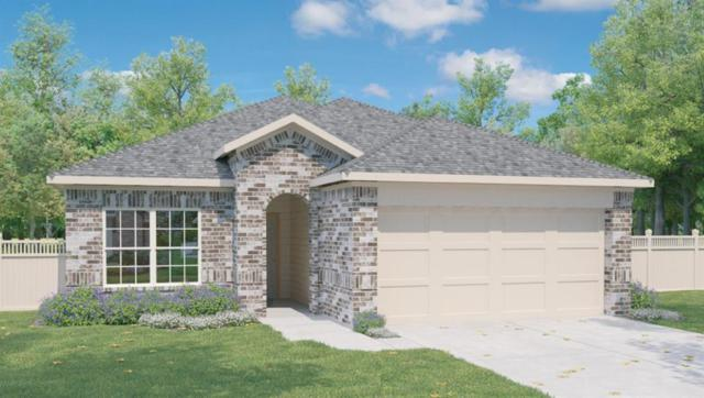 144 Presidential Path, Liberty Hill, TX 78642 (#6606910) :: The Heyl Group at Keller Williams