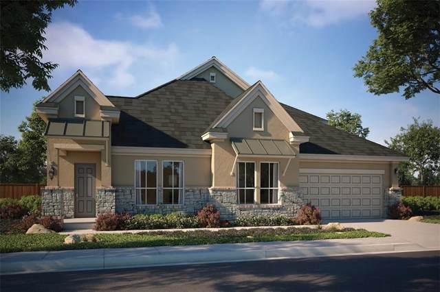207 Epoch Dr, Dripping Springs, TX 78737 (#6618893) :: Papasan Real Estate Team @ Keller Williams Realty