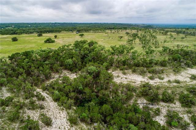 505 acres W Lakeshore Dr, Dripping Springs, TX 78620 (#6621742) :: Ben Kinney Real Estate Team
