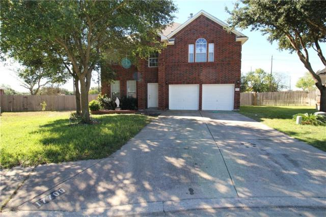 17700 Liffey Cv, Pflugerville, TX 78660 (#6637624) :: Ben Kinney Real Estate Team