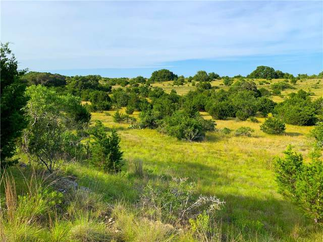 4 Cr 208 (Odiorne Rd.), Johnson City, TX 78636 (#6664610) :: The Perry Henderson Group at Berkshire Hathaway Texas Realty