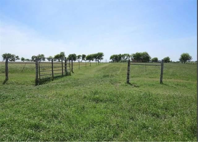 1001 County Road 433, Thrall, TX 76578 (#6675088) :: Papasan Real Estate Team @ Keller Williams Realty