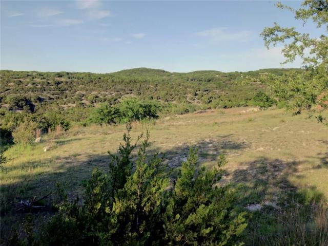 344 Stacey Ann Cv, Dripping Springs, TX 78620 (#6690553) :: The Heyl Group at Keller Williams