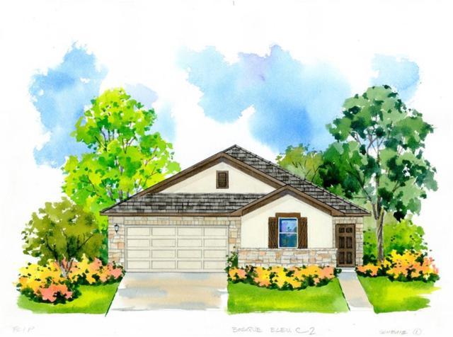 276 Magna Lane, Liberty Hill, TX 78642 (#6705830) :: RE/MAX Capital City