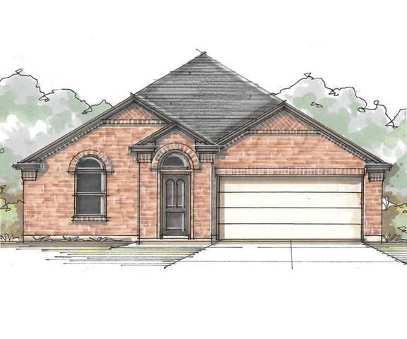 113 Caney Cv, Leander, TX 78641 (#6728727) :: Papasan Real Estate Team @ Keller Williams Realty